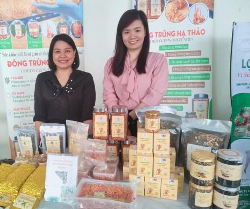 Phụ nữ vào cuộc sản xuất, kết nối tiêu thụ nông sản an toàn