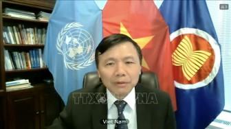 Việt Nam ủng hộ bầu cử tự do, công bằng ở Iraq