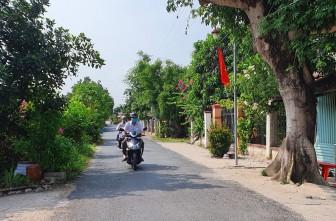 Châu Thành đạt 5/14 chỉ tiêu xây dựng huyện nông thôn mới