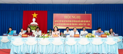 Chương trình hành động của người ứng cử đại biểu Quốc hội khóa XV trên địa bàn tỉnh An Giang