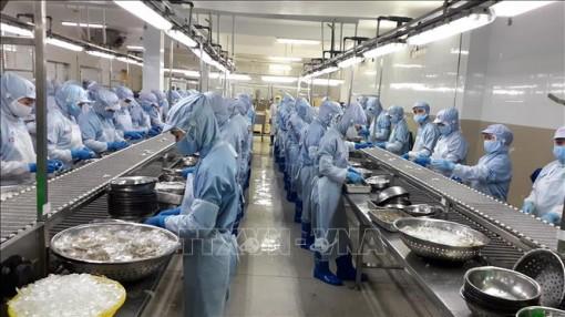 Thủy sản Việt Nam nắm bắt cơ hội từ các FTA