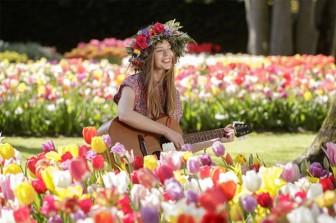 Say đắm với cảnh sắc vườn hoa đẹp nhất Hà Lan