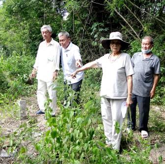 Khiếu nại lấn chiếm đất nhà chùa