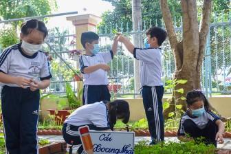 """Trường Tiểu học Nguyễn Du ra mắt Công trình """"Vườn trường em"""" năm học 2020- 2021"""