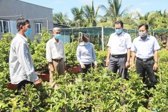 Phú Vĩnh phát huy vai trò cấp ủy Đảng trong phát triển kinh tế - xã hội