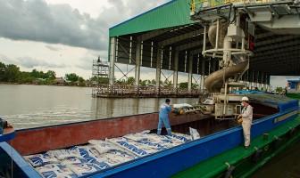 Lần đầu tiên xuất khẩu phân bón đạt khối lượng và kim ngạch cao nhất