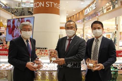 Vải thiều Việt Nam 'lên giá' sau màn ra mắt thành công ở Nhật Bản