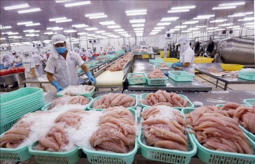 Triển vọng xuất khẩu thủy sản cán đích 9 tỷ USD