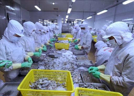 262 doanh nghiệp đạt tiêu chí vào vòng sơ tuyển doanh nghiệp xuất khẩu uy tín