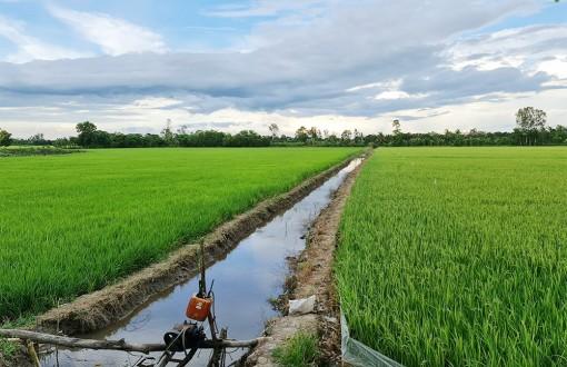 Sản xuất nông nghiệp theo tín hiệu thị trường