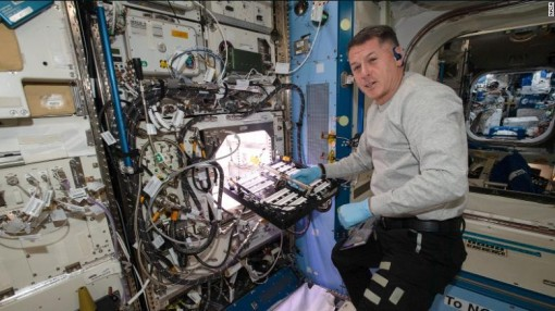 Lần đầu tiên phi hành gia trồng ớt trên Trạm vũ trụ quốc tế ISS