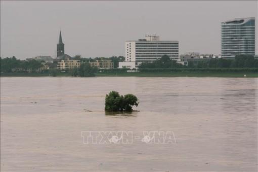 Cảnh báo khẩn từ đợt mưa lũ nghiêm trọng ở Tây Âu