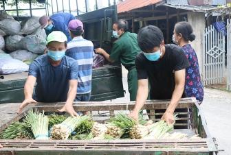 Hỗ trợ vận chuyển, tiêu thụ nông sản cho nông dân huyện Chợ Mới