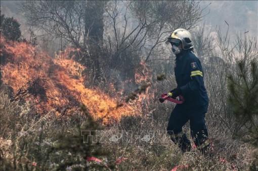 Cháy rừng và hỏa hoạn tại Hy Lạp, Thổ Nhĩ Kỳ và Liban