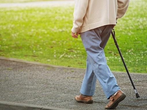Lợi ích bất ngờ khi đi bộ 40 phút/tuần ở người lớn tuổi