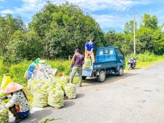 Tuổi trẻ Tri Tôn tiếp tục hỗ trợ tiêu thụ nông sản