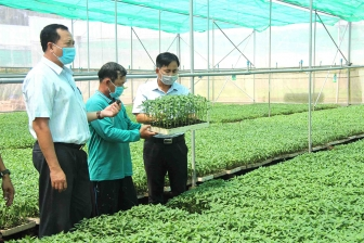 Tân Châu nhiều nhiệm vụ trọng tâm phát triển kinh tế - xã hội
