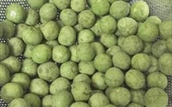 Lần đầu tiên 22 tấn quả sấu đông lạnh được tiếp thị tại Australia