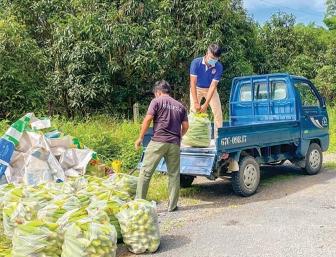 Thanh niên hỗ trợ nông dân tiêu thụ nông sản