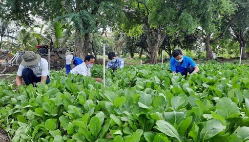 Hội Nông dân huyện Châu Phú hỗ trợ người dân trong giai đoạn dịch bệnh