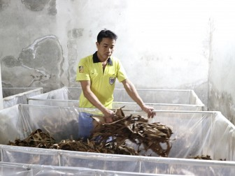 Phú Thọ: Nuôi con đặc sản ngày mở ra tối đậy lại, nông dân giàu hẳn lên