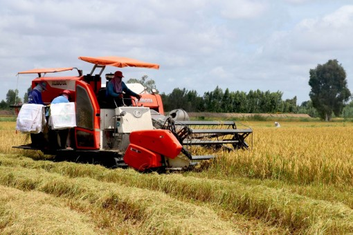 Đẩy mạnh tiêu thụ nông sản qua kênh phân phối thương mại điện tử