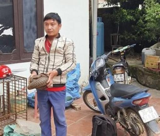 Bắt giữ 2 đối tượng vận chuyển động vật hoang dã