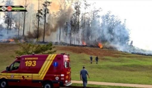 Tai nạn máy bay tại Brazil, 7 người thiệt mạng