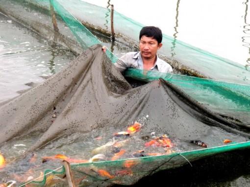 Đồng bộ hệ thống thủy lợi tại các xã nông thôn mới