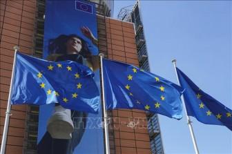 EU nới lỏng quy định cấp Thẻ Xanh nhằm thu hút lực lượng lao động chất lượng cao