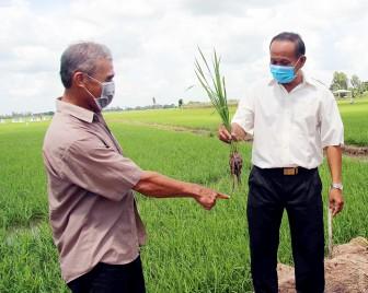 Xã Lê Chánh đầu tư cho nông nghiệp, nông thôn
