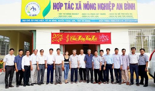 An Giang nâng chất hợp tác xã nông nghiệp