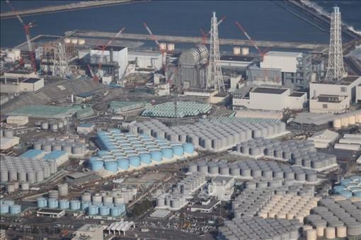 Mỹ dỡ bỏ lệnh cấm nhập khẩu nông sản Nhật Bản