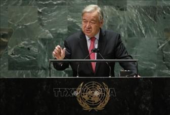 Liên hợp quốc kêu gọi củng cố mạng lưới y tế toàn cầu