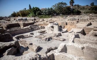 Phát hiện nhà máy nấu rượu vang cổ đại ở Israel