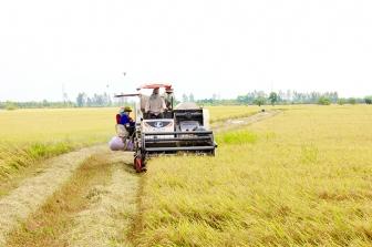 Châu Phú thực hiện nhiệm vụ phát triển kinh tế - xã hội