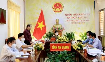 Đoàn đại biểu Quốc hội An Giang thảo luận về kinh tế - xã hội và phòng, chống dịch COVID-19