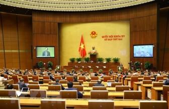 Kỳ họp thứ 2: Thảo luận về công tác tư pháp và phòng, chống tham nhũng