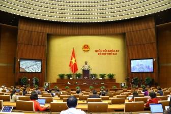 Ngày 26-10, Quốc hội thảo luận về dự án Luật Cảnh sát cơ động và dự án Luật sửa đổi, bổ sung một số điều của Luật Sở hữu trí tuệ