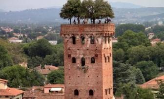 Độc đáo tháp cổ gần 700 năm tuổi, mọc cây trên đỉnh