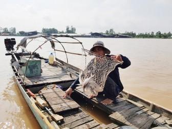Nguồn lợi thủy sản tự nhiên giảm